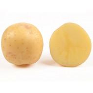 Картофель Электра (элита) /5 кг/
