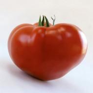 Томат KS 204 F1 /20 семян/ *Kitano Seeds*
