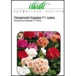 Пеларгония Бордюр смесь /10 семян/ *Профессиональные семена*