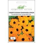 Тунбергия крылатая Сюзанна оранжевая /8 семян/ *Профессиональные семена*