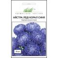 Астра Леди Корал синяя /20 семян/ *Профессиональные семена*
