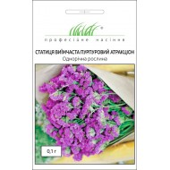 Статице Пурпурный атракцион /0,1 г/ *Профессиональные семена*