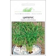 Циперус /10 семян/ *Профессиональные семена*
