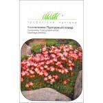 Камнеломка Пурпурный ковер /0,01 г/ *Профессиональные семена*