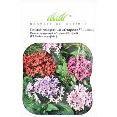 Пентас ланцетный Старла F1 смесь /10 семян/ *Профессиональные семена*