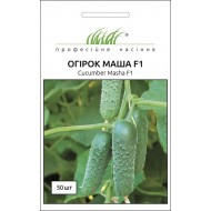Огурец Маша F1 /50 семян/ *Профессиональные семена*
