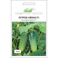 Огурец Афина F1 /10 семян/ *Профессиональные семена*