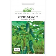 Огурец Афсар F1 /10 семян/ *Профессиональные семена*