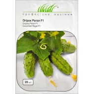 Огурец Регал F1 /20 семян/ *Профессиональные семена*