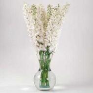 Дельфиниум Гардиан F1 белый /100 семян/ *Pan American*