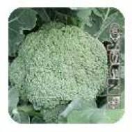 Капуста брокколи Трубадур /500 семян/ *Наско*
