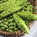 Горох Болеро /0,5 кг семян/ *May Seeds*