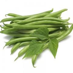 Фасоль Джина /0,5 кг семян/ *May Seeds*