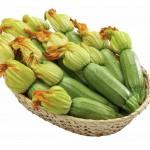 Кабачок Карамболь F1 (Карамба) /500 семян/ *United Genetics*