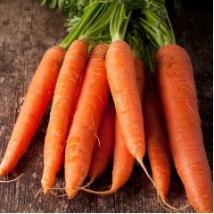 Морковь Каротан /250 г/ *Rijk Zwaan*