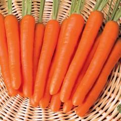 Морковь Нантес /0,5 кг семян/ *Tezier*