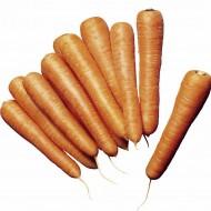 Морковь Нантес Скарлет /5 кг семян/ *United Genetics*