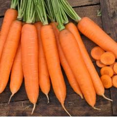 Морковь Сиркана F1 /100.000 семян/ *Nunhems Zaden*