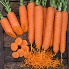 Морковь Элеганс F1 /100.000 семян/ *Nunhems Zaden*