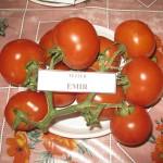 Томат Эмир F1 /500 семян/ *United Genetics*
