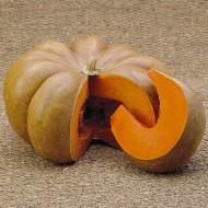 Тыква Мускат де Прованс /0,5 кг семян/ *Tezier*