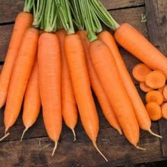 Морковь Сиркана F1 /100.000 семян (1,8-2,0)/ *Nunhems Zaden*