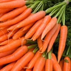 Морковь Кантербьюри F1 /1.000.000 семян (2,2-2,4 мм)/ *Bejo Zaden*
