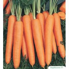 Морковь Нарбонне F1 /1.000.000 семян (1,8-2,0 мм)/ *Bejo Zaden*