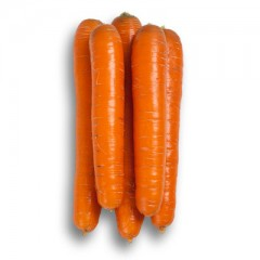 Морковь Джерада F1 /1.000.000 семян калибр >1,6мм/ *Rijk Zwaan*
