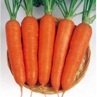 Морковь Крофтон F1 /1.000.000 семян калибр >1,6мм/ *Rijk Zwaan*
