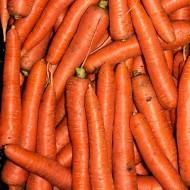 Морковь Морелия F1 /100.000 семян калибр >1,6мм/ *Rijk Zwaan*