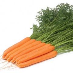 Морковь Рига F1 /100.000 семян калибр >1,6мм/ *Rijk Zwaan*