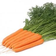 Морковь Рига F1 /1.000.000 семян калибр >1,6мм/ *Rijk Zwaan*
