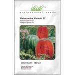 Арбуз Карнаката (Карнак) F1 /100 семян/ *Профессиональные семена*