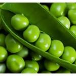Горох Вальверде /100.000 семян/ *Syngenta*