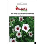 Лен крупноцветковый белый c красным глазком /0,5 г/ *Садыба Центр*