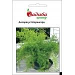 Аспарагус Шпренгера /0,3 г/ *Садыба Центр*