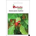 Кофейное дерево Арабика /1 г/ *Садыба Центр*