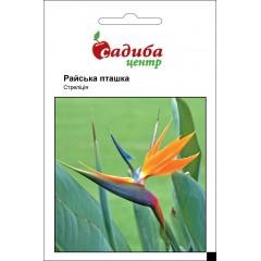 Стрелиция Райская птичка /3 шт/ *Садыба Центр*