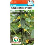 Огурец Сибирский экспресс F1 /7 семян/ *СибСад*