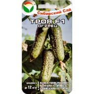 Огурец Троя F1 /5 семян/ *СибСад*