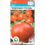 Томат Чудесная гроздь /20 семян/ *СибСад*