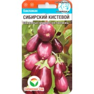 Баклажан Сибирский кистевой /20 семян/ *СибСад*