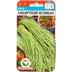 Вигна Сибирский великан /6 семян/ *СибСад*